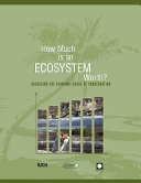 How Much is an Ecosystem Worth