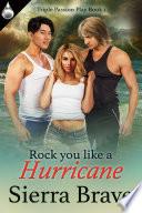 Rock You Like A Hurricane book