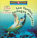 Sea Turtles Tortugas Marinas