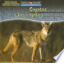 Coyotes Are Night Animals   Los coyotes son animales nocturnos