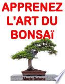 illustration Apprenez l'art du Bonsaï : Astuces pour des arbres resplendissants