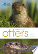 RSPB Spotlight: Otters Account Of An Intriguing And Much Loved Animal That