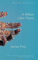 A Million Little Pieces : a plane to find his front...