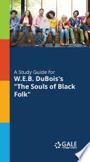 A Study Guide to W E B  DuBois s The Souls of Black Folk