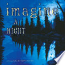 Imagine a Night
