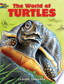 The World Of Turtles