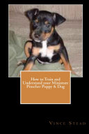 How to Train and Understand Your Miniature Pinscher Puppy & Dog