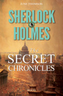 Sherlock Holmes: The Secret Chronicles