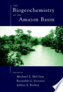 The Biogeochemistry of the Amazon Basin