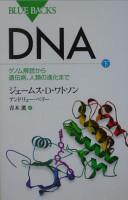 DNA 下