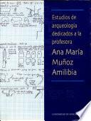 Estudios de arqueología dedicados a la profesora Ana María Muñoz Amilibia
