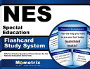 Nes Special Education Study System