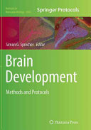 Brain Development book