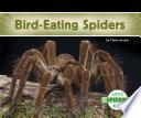 Bird Eating Spiders