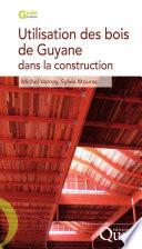 Le Traitement Des Bois Dans La Construction par Michel Vernay, Sylvie Mouras