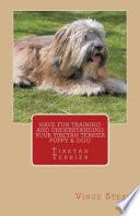 Have Fun Training And Understanding Your Tibetan Terrier Puppy Dog
