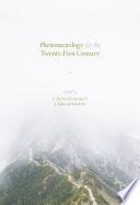 Phenomenology for the Twenty-First Century