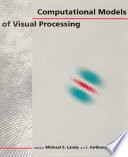 Computational Models of Visual Processing