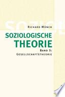 Soziologische Theorie. Bd. 3