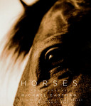 Horses : of the horse, noting the...