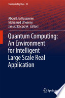 Quantum Computing An Environment for Intelligent Large Scale Real Application