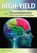 Highyield Neuroanatomy