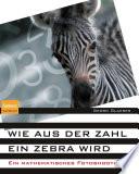 Wie aus der Zahl ein Zebra wird