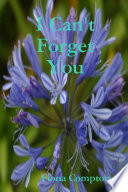 I Can t Forget You