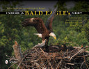 Inside a Bald Eagle s Nest