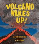 Volcano Wakes Up
