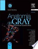 Anatomia del Gray  Le basi anatomiche per la pratica clinica
