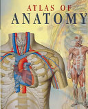 Atlas of Anatomy Workings Of The Human Body