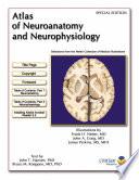 Atlas of Neuroanatomy and Neurophysiology  Netter Craig Perkins  2002