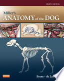 Miller s Anatomy of the Dog   E Book