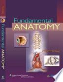 Fundamental Anatomy