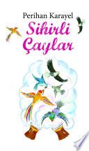 Sihirli Aylar book