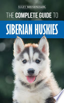The Complete Guide To Siberian Huskies