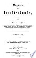 Magazin für Insektenkunde