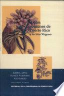rboles comunes de Puerto Rico y las Islas V  rgenes