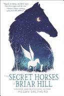 the-secret-horses-of-briar-hill