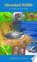 Adirondack Wildlife