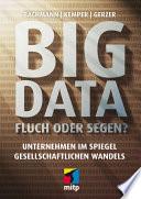 Big Data   Fluch oder Segen