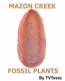 Mazon Creek Fossil Plants