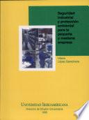 Seguridad industrial y protección ambiental para la pequeña y mediana empresa