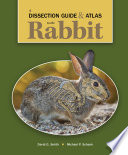 A Dissection Guide Atlas To The Rabbit