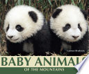Baby Animals of the Mountains