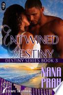Entwined Destiny  Destiny African Romance  3