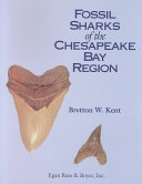 Fossil Sharks of the Chesapeake Bay Region