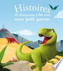 Histoires de dinosaures    lire avec mon petit gar  on