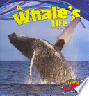 A Whale s Life